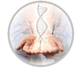 Odontología Genética